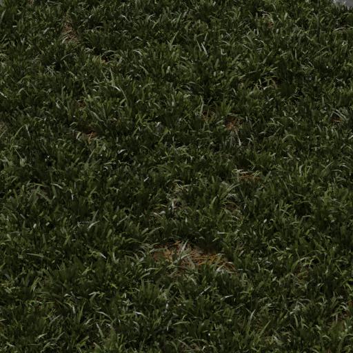 Thumbnail: grass lawn cut 1x1 m