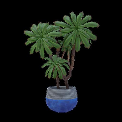Thumbnail: Plant 18