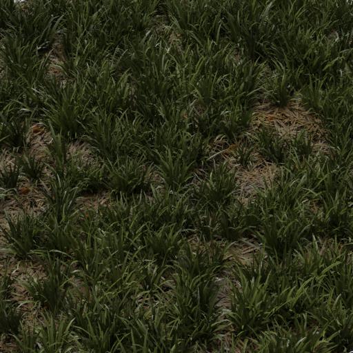grass 1x1 m basic uncut