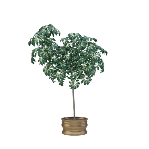 Thumbnail: Plant 22