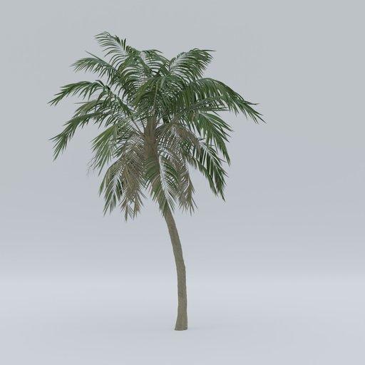 Thumbnail: Palm V1