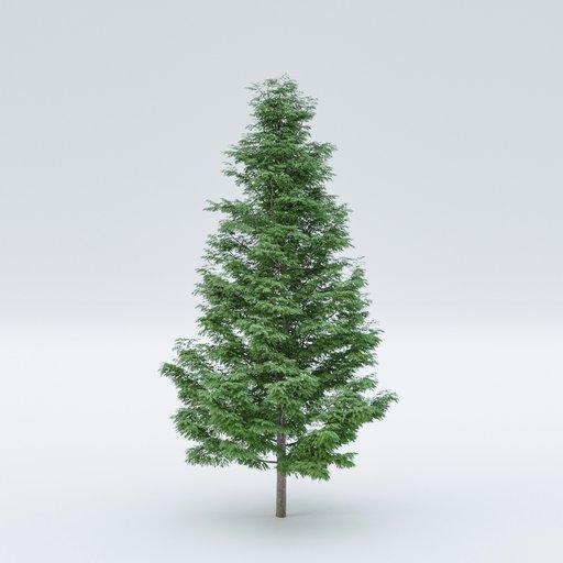 Thumbnail: Tree Cupressoncyparis Leylandii