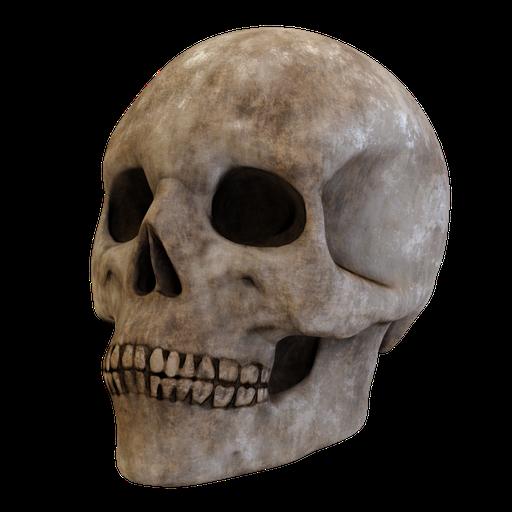 Thumbnail: Decorative old skull