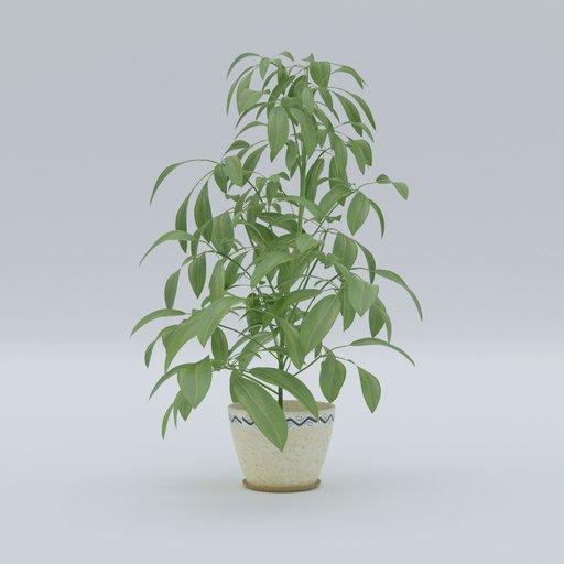 Thumbnail: Plant 9